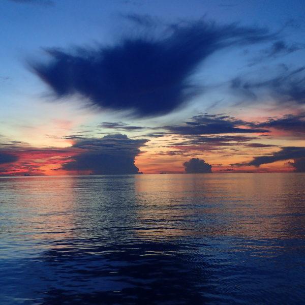 réserve marine voyage plongée aux Philippines