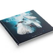 Antarctica par le photographe naturaliste Greg Lecoeur
